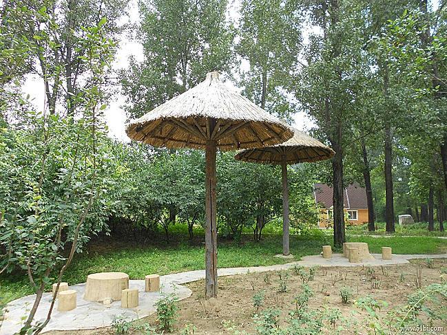 单的北京野生动物园