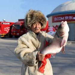 查干湖鱼 冷冻有机胖头鱼 冬捕胖头王 15-15.5斤 1条 礼盒装