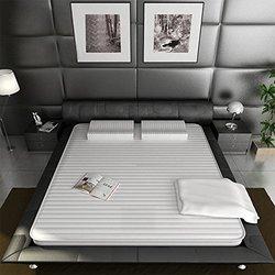 Nittaya妮泰雅  原装纯天然乳胶床垫床褥 2.5CM