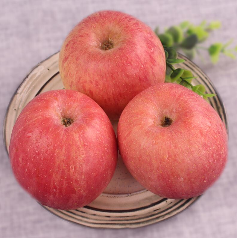 陕西特产红富士5斤脆甜