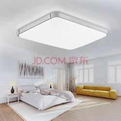 雷士照明(NVC)吸顶灯 客厅灯 卧室灯 led灯具 现代简约时尚苹果灯 长方形单色光 银色(36W 6500K)199元(双重优惠)