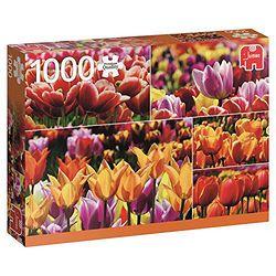 Jumbo 拼图 18364  荷兰的郁金香 1000片
