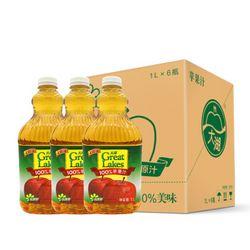 大湖 100%果汁 苹果汁 1L*6瓶+缤纷果篮 255ml*8瓶 套装 *2件
