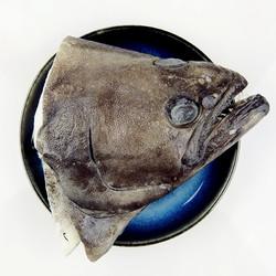 SOLID STANDARD 纯色本味 冷冻冰岛鸦片鱼头(庸鲽鱼头)200g/袋