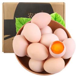 xiaohanhuo 小憨货 农家土鸡蛋 40枚