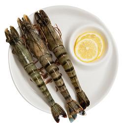 jufuxian 聚福鮮 活凍黑虎蝦 毛重1.2kg