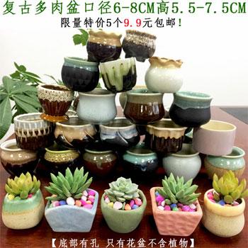 随机5个多肉陶瓷花盆