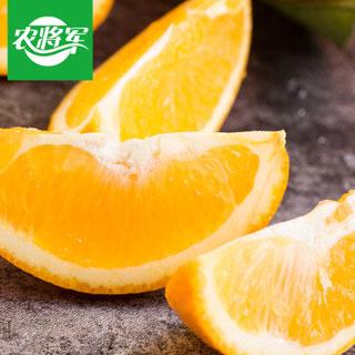 鲜橙甜橙子净重10斤