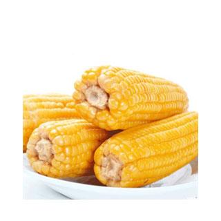 析芮黄糯玉米2400g