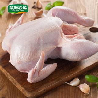 高山散养土鸡2.4-2.8斤