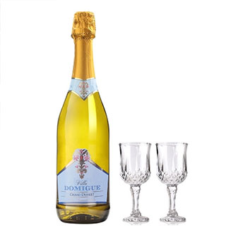 意大利原瓶进口起泡白葡萄酒750ml