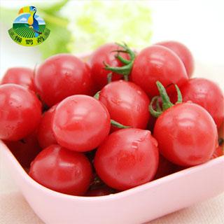 新鲜寿光樱桃小番茄小西红柿圣女果4斤