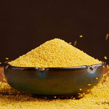 有机小米新米粟米黄小米杂粮450g*2