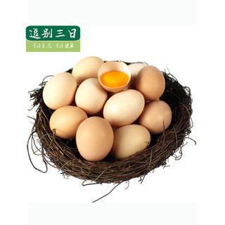 天然散养A级鸡蛋40个盒装