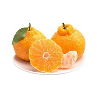 四川现摘丑柑橘桔子5斤
