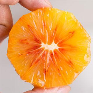 四川资中血橙5斤