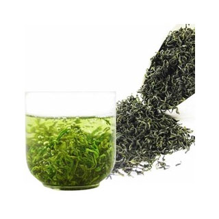 高山云雾绿茶500g送青瓷壶