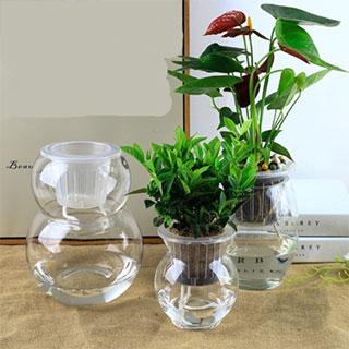 自动吸水浇水玻璃花瓶