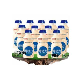 胃动力乳酸菌330ml*12瓶