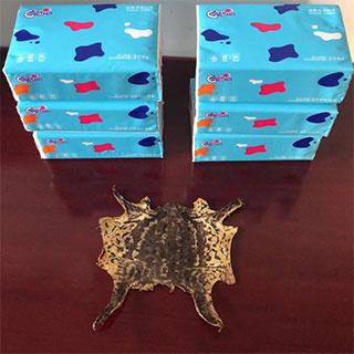 蟾蜍衣送6包餐巾纸