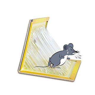 希诺超强力粘鼠板10张