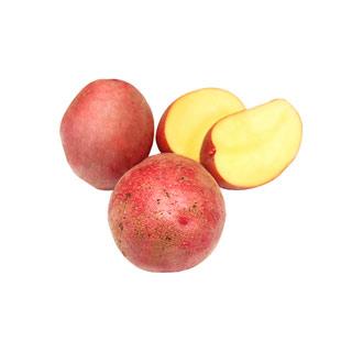 红土豆内蒙古马铃薯5斤