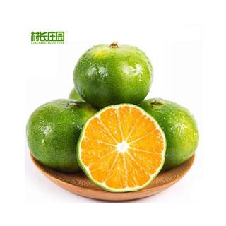 现摘青皮蜜桔橘子5斤