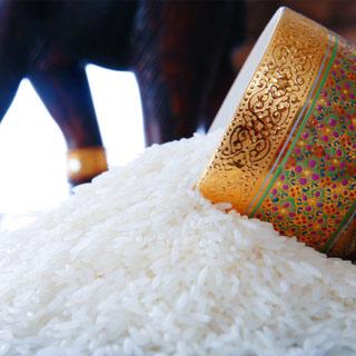 泰皇泰国进口泰香米10kg