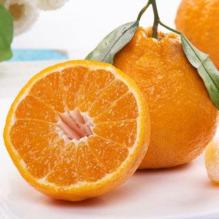 四川当季新鲜柑丑橘5斤
