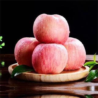 10斤現摘陜西洛川紅富士蘋果