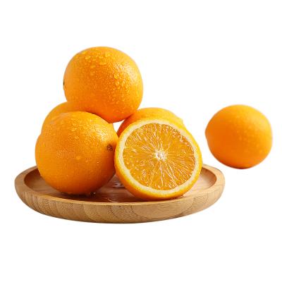 贛南臍橙4.5斤裝