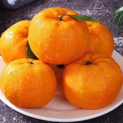 貴州特產江椪柑橘子8斤