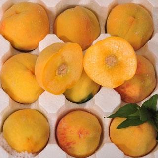 砀山黄桃水果5斤