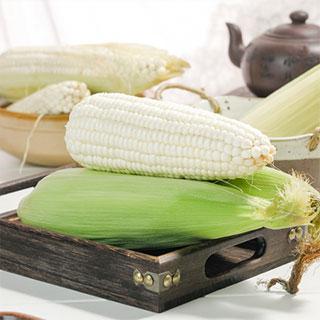 新鲜甜糯玉米5斤装