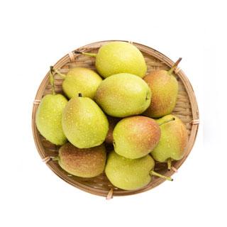 脆甜多汁新鲜香酥梨5斤