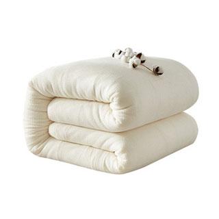 新疆純棉棉被保暖3斤被子