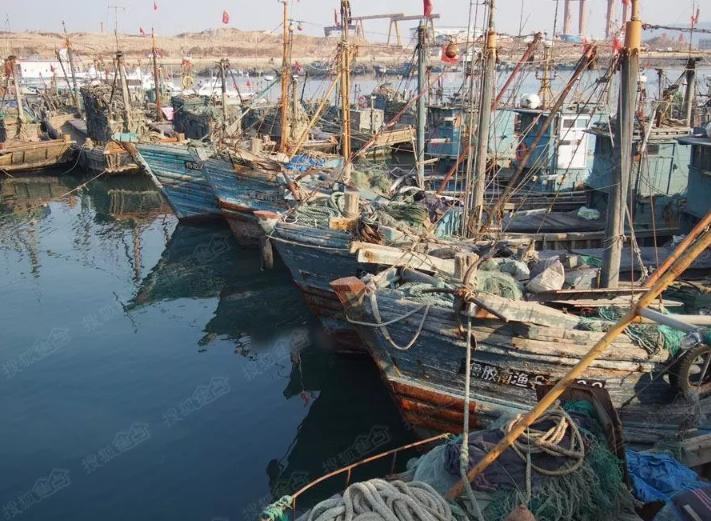 2019年,渔船油价补贴总额降至2014年的40%!
